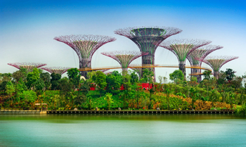 Afbeelding: Gardens by the Bay